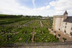 zielony labirynt Obraz Royalty Free