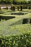 zielony labirynt Zdjęcie Stock
