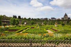zielony labirynt Fotografia Stock