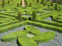 zielony labirynt Zdjęcia Stock