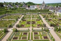 zielony labirynt Obrazy Royalty Free