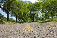 zielony lane zdjęcia stock