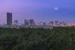 Zielony las w dużym mieście pod księżyc nieba zmierzchem Zdjęcia Stock