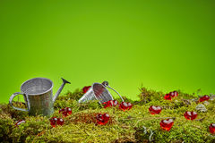 Zielony lasowy valentines tło Obraz Royalty Free