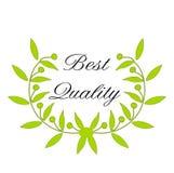 Zielony Laurowy wianek z słowa ` ilości Najlepszy ` Zdjęcia Royalty Free