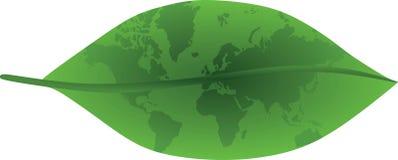 zielony liść Zdjęcie Royalty Free