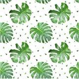 Zielony liść pattern-1 Obrazy Stock