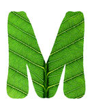Zielony liść tekstury abecadło Fotografia Royalty Free