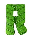 Zielony liść tekstury abecadło Zdjęcie Stock