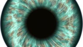 Zielony ludzki oko dilating i skraca Bardzo szczegółowy ekstremum w górę irysa i ucznia zbiory