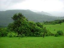zielony malowniczy obszarów wiejskich Obrazy Royalty Free