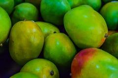 zielony mango Zdjęcia Royalty Free