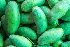 zielony mango Zdjęcie Stock