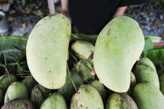 Zielony mango na ręce Fotografia Royalty Free