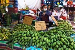 Zielony mango na sprzedaży przy rynkiem w Sakon, Nakhon, Tajlandia obrazy stock