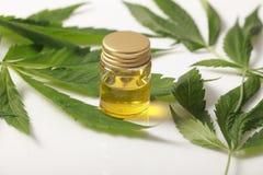 Zielony marihuana liścia olej na białym tle zdjęcie stock