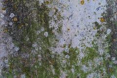 Zielony mech i rdza na metal powierzchni z wzorami i pęknięciami wysokiej jakości tekstura, tło -/ obrazy stock