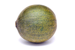 Zielony melon Obraz Royalty Free