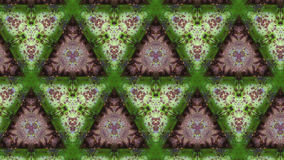 Zielony metal rdzy tekstury abstrakta wzór Obrazy Stock