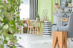 Zielony mieszkanie z dekoracyjnymi roślinami zdjęcia stock