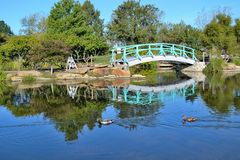 Zielony most obrazy royalty free