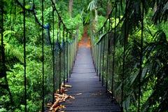 Zielony most Zdjęcie Royalty Free