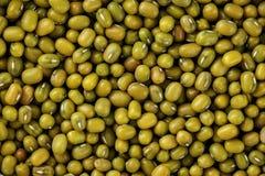Zielony Mung fasoli tło Makro- texture Jarska proteina zdjęcia royalty free