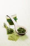 Zielony naturalny superfood. Fotografia Stock