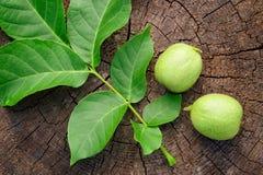 Zielony niedojrzały orzech włoski i liście na drewnianym tle Fotografia Stock