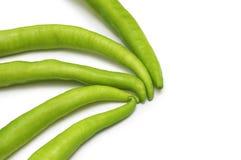 zielony odizolowane papryki obraz stock