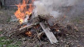 Zielony odpady ogień zbiory wideo