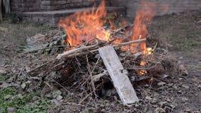 Zielony odpady ogień zbiory