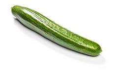 Zielony ogórek Obrazy Stock