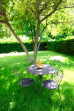 zielony ogród naturalne pokój Obrazy Stock