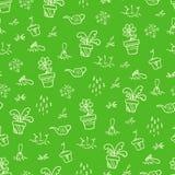 Zielony ogródu wzór Zdjęcia Royalty Free