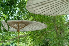Zielony ogrodowy parasol Zdjęcie Royalty Free