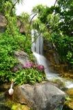 Zielony ogrodowy Thailand Fotografia Stock
