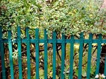 Zielony ogrodzenie Zdjęcie Stock