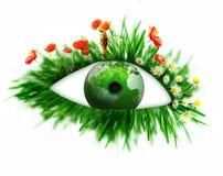 Zielony oko fotografia stock