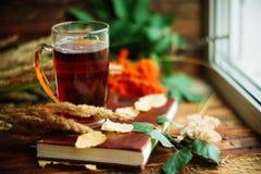 zielony okrąg w szaliku okno z liśćmi klonowymi i krople w po deszczu, jesieni, sezonie/gdy ty potrzebujesz ciepłych napoje Zdjęcia Stock