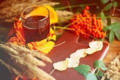 zielony okrąg w szaliku okno z liśćmi klonowymi i krople w po deszczu, jesieni, sezonie/gdy ty potrzebujesz ciepłych napoje Obraz Royalty Free