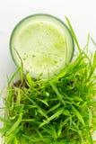 Zielony Organicznie Pszeniczny trawa sok przygotowywający pić Zdjęcia Stock