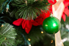 Zielony ornament Makro- Zdjęcia Stock
