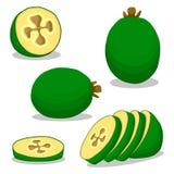 Zielony owocowy feijoa Zdjęcia Royalty Free