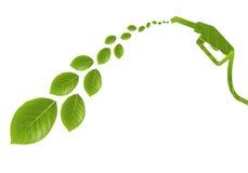 Zielony paliwo z liśćmi II Fotografia Stock