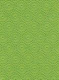 Zielony papierowy tło obrazy stock