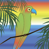 Zielony papuzi ptasi tło ilustracja wektor