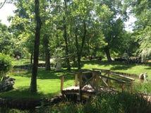 Zielony park Zdjęcia Royalty Free
