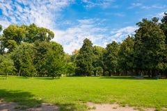 Zielony park Obrazy Stock