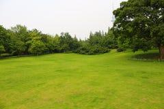 Zielony park w mieście Zdjęcia Royalty Free